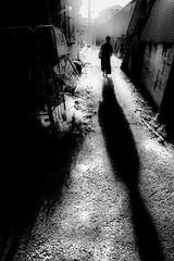 20180315 Sunlight (soyokazeojisan) Tags: japan osaka bw street people blackandwhite sunlight light walk shadow olympus em1markⅱ 918mm 2018 digital