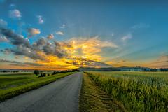 Waiting fpr Sunrise (M-Z-Photo) Tags: colmberg bayern deutschland de hdr sonnenaufgang morgenstimmung felder landschaft natur wald getreide