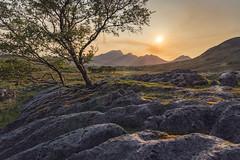 The Misty Island (Blitzknips) Tags: isleofskye scotland schottland sunset sonnenuntergang landscape landschaft baum tree felsen rocks berge mountains redsky roterhimmel sonyilce7m2 sonya7ii fe2470mmf28gm