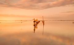 Calm Delta del Ebro (JesusLobato) Tags: color nikon delta deltadelebro amanecer d7200 tokina1116 filtros lucroit calma largaexposicion long exposure