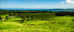 Foothills of Mount Tauhara (bhrushank1) Tags: mount tauhara taupo newzealand travel nature landscape photography