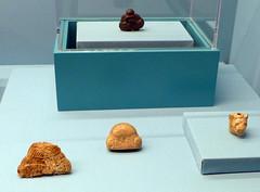 L1070835 (H Sinica) Tags: hongkonghistorymuseum britishmuseum achaemenid cambyses