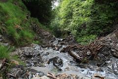 torrent (bulbocode909) Tags: valais suisse mex torrents eau montagnes nature forêts arbres printemps rochers vert troncs