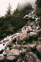 CE785032-6CAD-4579-AFAC-6076479C747A (jullietserov) Tags: mountain mountains poland zakopane lake nature forest water fog waterfall rain clouds trees bridge