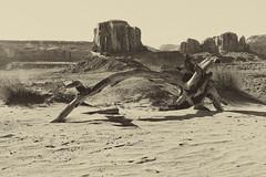 Navajo Culture (dorameulman) Tags: dorameulman navajoculture navajo monumentvalley utah landscapephotography landscape desert messa monochrome blackandwhite canon7dmark11 canon