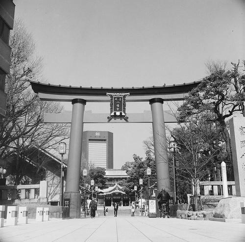富岡八幡宮 画像41
