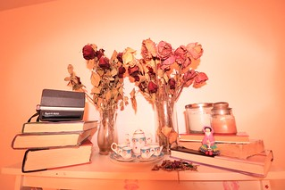 #nature #naturephotography #flowers #flowerphotography #trees #branches #landscape #landscapephotography #driedflowers #deadflowers #plants