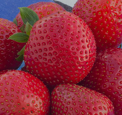 Strawberries (frankmh) Tags: berry strawberry hittarp skåne sweden macro