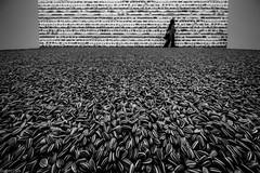 Ai Weiwei, Semillas de Girasol (Sunflower seeds) (Eugercios) Tags: aiweiwei sunflower seeds semillas girasol arte art china chile santiago santiagodechile blanco branco black white negro preto corpartes