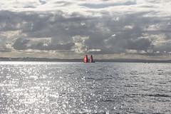 9 june 2018 - photo a day (slava eremin) Tags: 365 1day dailyphoto photoaday auckland nz newzealand ocean boat