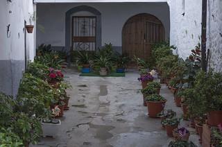 El callejón de las flores