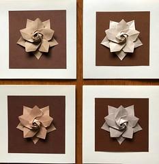 More origami (anuradhadeacon-varma) Tags: greetingscard origami paperfolding tantpaper sakurastar