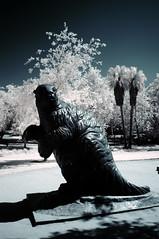sloth (Infrakrasnyy) Tags: infrared ir sony alpha 5n hoya r72 720nm los angeles fairfax beverly hills lacma la brea tar pits