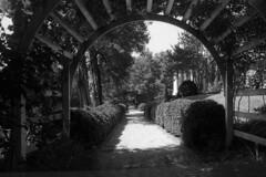 Garden Path - Belmont (dungan.robert) Tags: blackandwhite film 35mm falmouth staffordcountyvirginia virginia un54 konicaautotc orwo 28mmf35konicahexanonar 338223 belmont freestyleasboricaciddev 116m45sec monochrome copyrightrobertedungan2018