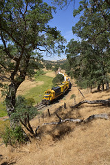 Summer at Canyon Tank (CN Southwell) Tags: sera sierra northern rr railroad california foothills gold country mother lode gp20 bluebonnet genset