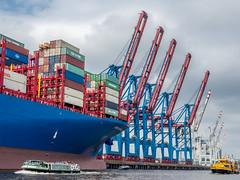 LR Hamburg 2018-5190363 (hunbille) Tags: birgittehamburg2018lr germany hamburg harbour crane five cargo ship elbe river