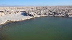 Salar de Atacama Salt Flats - Chile - P1110215 (Toby Garden) Tags: laguna chaxa flamingo breeding site salar de atacama salt flat flats toconao chile