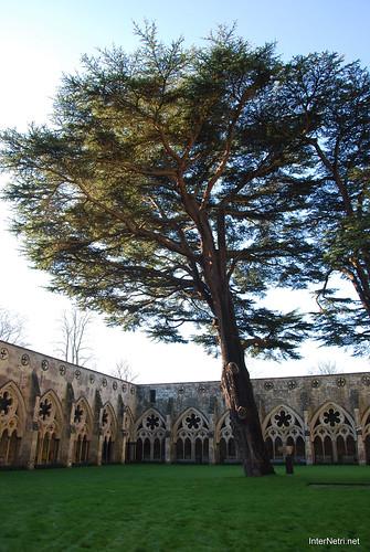 Солсберійський собор, Англія InterNetri United Kingdom 450