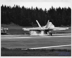 Black and White of OLF, Tire Smoke, EA-18G and Central Whidbey (AvgeekJoe) Tags: bw blackwhite blackandwhite boeingea18ggrowler coupeville coupevillenolf coupevillenavaloutlyingfield coupevilleolf coupevilleoutlyingfield d5300 dslr ea18g ea18ggrowler electronicwarfarejet islandcounty knra nolf nolfcoupeville nra navalaviation navyoutlyingfield nikon nikond5300 olf other outlyingfield usnavy usa usn vaq129 vaq129vikings vikings washingtonstate whidbeyisland aircraft airfield airplane airport aviation electronicwarfare growler jet plane smokingtires warplane