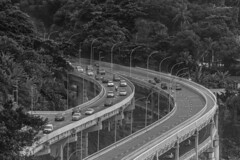 Joá Viaduct (brunogargaglione) Tags: riodejaneiro brasil brazil são conrado road avenue viaduct joá highway trees tree black white monochrome car cars forest landscape landscapes cityscape cityscapes city citylights townscape barra da tijuca scenics scenic bridge
