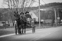 Technology? No sir! (Rabican7) Tags: ohio amish buggy traditional simple monochrome road village horses amishcountry blackandwhite traditionalliving bw traveling timetravelers