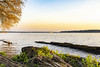 Just Drifting Along (SteveFrazierPhotography.com) Tags: roadsidepark mississippiriver banks water hamilton nauvoo illinois evening horizon glow leaves tree budding beautiful may 2018 stevefrazierphotography ameren missouri mo keokuk energycenter power electricity hydroelectric generator il logs floating landscape waterscape park sky
