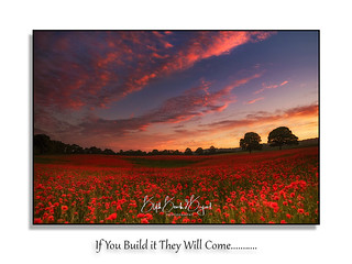 If you build it they will come ----Field of Dreams