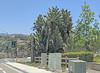 Carlsbad 6-8-18 (1) (Photo Nut 2011) Tags: carlsbad sandiego california