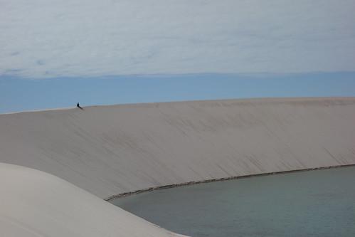 Les dunes peuvent être très hautes. Guillaume qui est assis au sommet paraît tout petit.