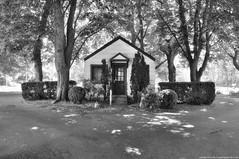 2018-05-30 Grand View Cemetery (B&W) (03) (2048x1360) (-jon) Tags: anacortes fidalgoisland sanjuanislands skagitcounty skagit washingtonstate cemetery grandviewcemetery building office blackwhite bw blackandwhite road tree a266122photographyproduction