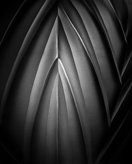 imagine a cathedral (Reflectory (Chris Brown) Away) Tags: abstract abstraction minimal minimalism nonobjective nopeople vertical portrait bw blackandwhite black gray white curve curves line lines arch arches glass vase cathedral reflectory