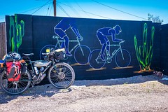 I really liked this urban art in Phoenix as it was right along a bicycle route.