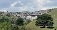 Still on the way to Malham cove (Andrew-Jackson) Tags: