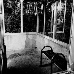 Ouvrir les fenêtres en attendant... (woltarise) Tags: abri arrêt autobus 6h00am attente reflets fenêtres montréal rosemont stm iphone7