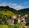 Schönmünzach im Murgtal (MHikeBike) Tags: wald berge bäume urwald nationalpark schwarzwald nordschwarzwald murg murgtal baiersbronn huzenbach schönmünzach wandern wege ruhe stille berg gipfel kurort schönmünz