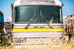 Go Greyhound and Leave the Driving to Us (Thomas Hawk) Tags: america california gm generalmotors northerncalifornia usa unitedstates unitedstatesofamerica williams abandoned bus fav10
