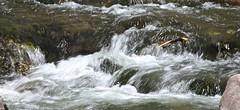 Fall Creek at Treasure Falls (Bill Jacomet) Tags: road to durango co colorado travel trip drive 2018 fall creek at treasure falls