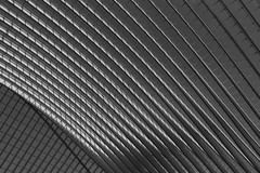 Líneas y curvas - Lines and Curves (Ce Rey) Tags: abstract monochrome black arquitectura abstracto abstracta geometria blackandwhite blancoynegro lineas ceilings lines composition composición bw ceiling station composicion 7dwf flickrexploreme geometric explore imaginative calatrava liegeguillemins flickrhivemind
