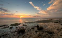 Gulf Coast Sunset (ap0013) Tags: gulfcoast sunset emersonpoint palmettoflorida landscape ocean water floridasunset oceansunset gulfsunset