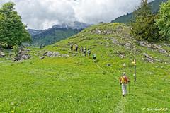 IMG_2252_DxO.jpg (Goodson73) Tags: didier bonfils goodson73 dgoodson bauges pointe de chaurionde 2157m parc du mouton rando montagne