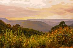 Serra Gaúcha (Claudio Arriens) Tags: carlzeissjenatessar50mm m42 manuallens canoneos40d czjtessar50mm 50mm serragaúcha riograndedosul brasil landscape paisagem