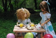 P.......is for picnic party! (Little little mouse) Tags: tanlaryssa kayewiggs tansy bjd dollfie fairlaryssa primrosebramblethorn competitionwin factoryfaceup homemadedress picnic o s