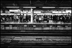 Shinjuku Station, Shinjuku, Tōkyō-to (GioMagPhotographer) Tags: tōkyōto platform metrostation peoplecrowd afterdark metro leicamonochrom japanproject japan night subway tokyo tkyto underground