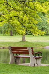 Sit a While (Karen_Chappell) Tags: bench seat green tree park travel perth ontario canada landscape scenery scenic water leaves