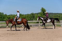 JBC_6001.jpg (Jim Babbage) Tags: krahc bethany appaloosa horses horseshow 2018
