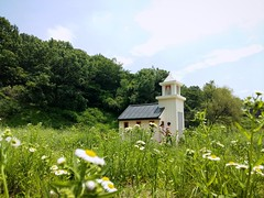 Idyllic (Cassan Weish) Tags: suncheon drama film set jeolla jeollanamdo church field idyllic grass sky mountain green weed sunshine sunny day afternoon nice random visual nrv