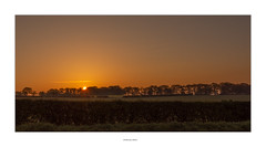 Morning has broken (AnthonyCNeill) Tags: sonnenaufgang sunrise warm colours early morning morgen früh