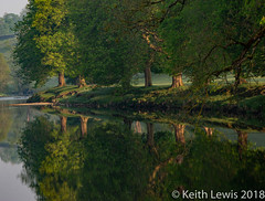 Reflecting in the early morning (keithhull) Tags: riverwharfe trees river reflection dawn wharfedale northyorkshire landscape 2018
