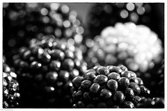 candy (fhenkemeyer) Tags: sweets bw abstract blackberry raspberries haribo macromonday hmm candy