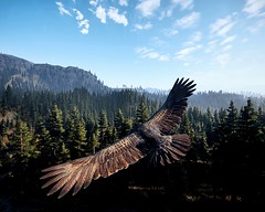 FarCry5_2018_05_12_03_35 (Rdjazzd) Tags: screenshot far cry 5